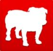 BullGuard Online Backup